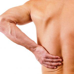 Spieren & gewrichten