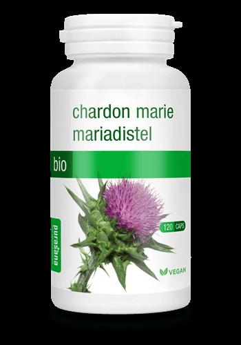 mariadistel capsules